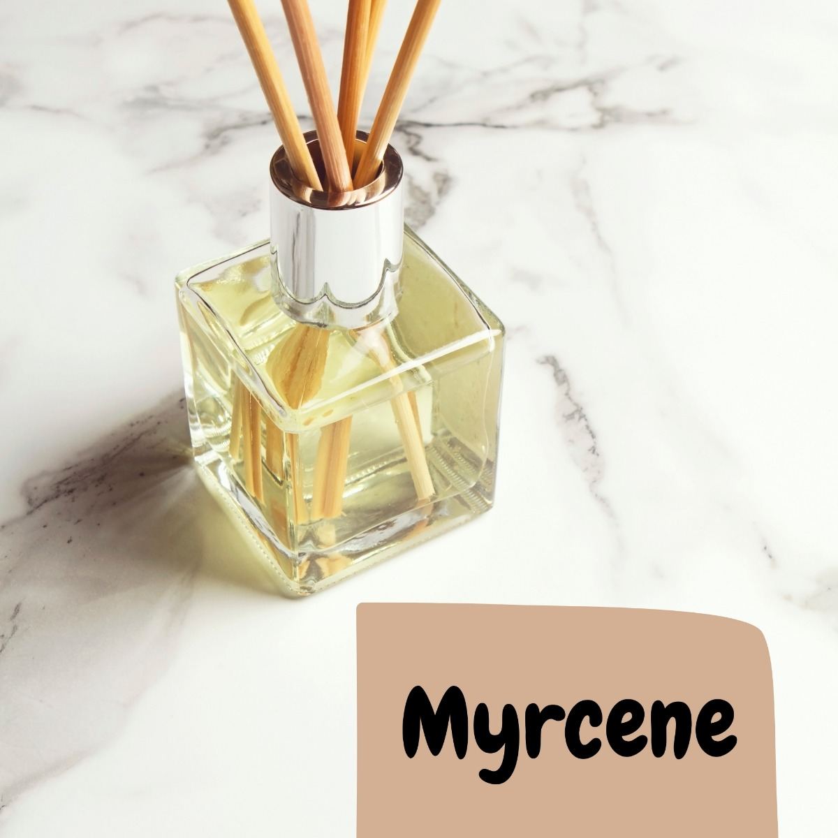 oil sense in the room vibe with text saying Myrcene