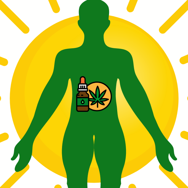 CBD Oil and how it interacts with the body